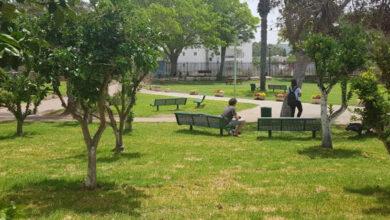 Photo of מצטייני חוף הכרמל: ממוצע זכאות לבגרות – מעל 80 אחוז